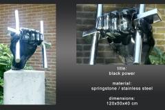 black powewer