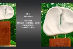 earorgan